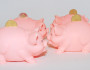 fighting piggy banks, money, saving